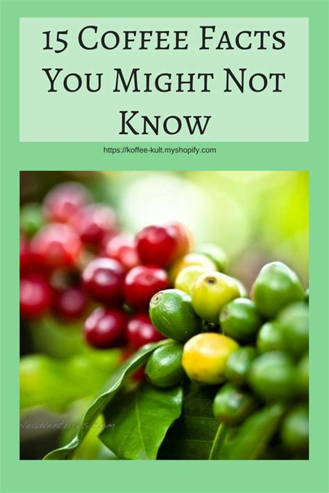 7 Facts About Coffee You Do Not by 15 Coffee Facts You Might Not