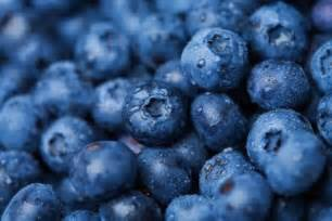 blue blueberries food fruit healthy image 275586 on favim