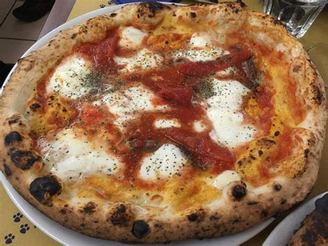 the best pizza in rome best pizza in rome picture of la gatta mangiona