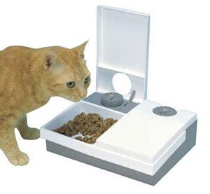 automatic pet feeders reviews buying