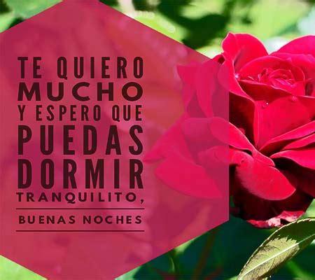 imagenes de rosas rojas de buenas noches imagenes de rosas rojas de buenas noches rosas de amor
