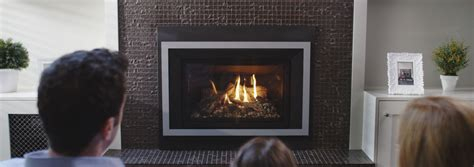 Calmex Fireplace by Calmex Fireplace Home Design Inspirations