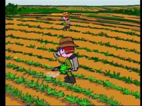 1000 images about prevenci 243 n de riesgos imagenes de la agricultura co y plaga prevenci 243 n de