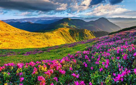 مجموعه عکس زیباترین مناظر دنیا