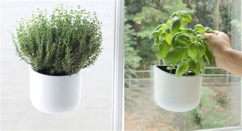 indoor herb garden planters 30 indoor herb pots and planters to add flavor to any home