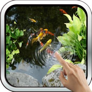 koi free live wallpaper 1 35 apk magic touch realistic koi live wallpaper android apps