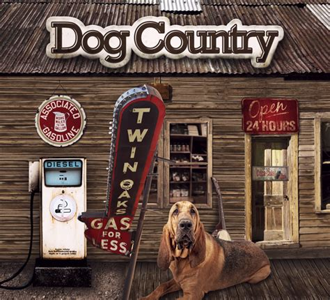 country songs about dogs giveaway country compilation