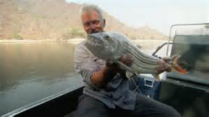 Croc Toothed Fish in the Zambezi   River Monsters   Animal Planet