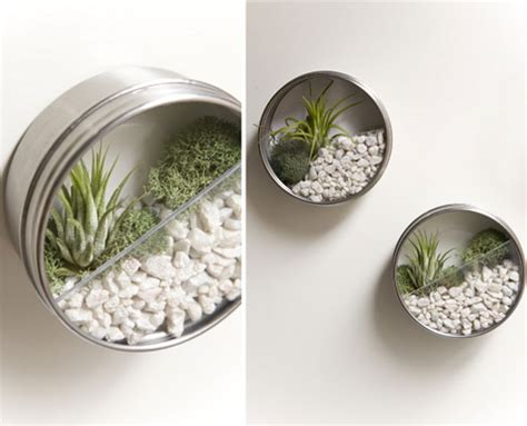 how to make eco friendly terrariums how to make a