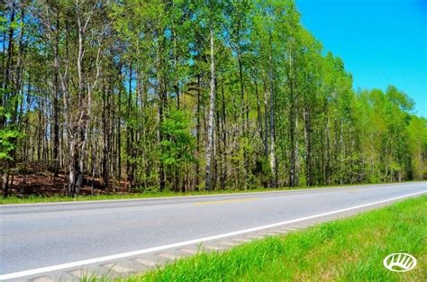 Small Affordable Hunting Tract In Eastern Alabama   Wedowee   Whitetail Properties