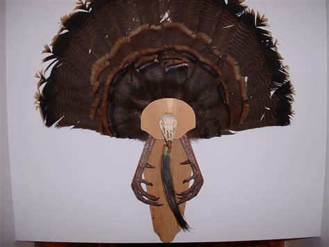 turkey fan mount template turkey fan mount template 28 images the garhole diy