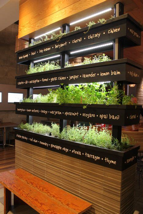 plant partitions  living wall room dividers