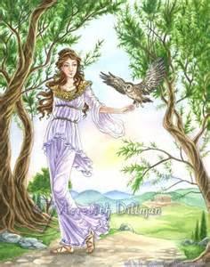 olive tree athena athena goddess greek mythology owl olive tree