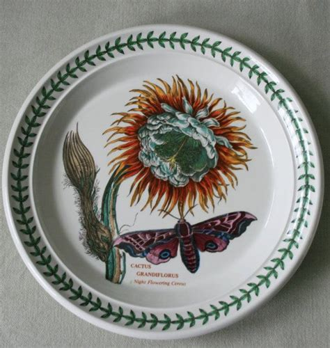 Portmeirion Botanic Garden Patterns Vintage Portmeirion Botanic Garden Salad Plate Quot Cactus Grandiflora Quot N
