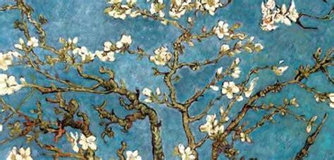 mandorlo fiorito un ramo di mandorlo fiorito per festeggiare la primavera
