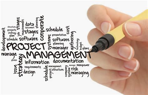 best photo management best project management apps to manage projects on the go