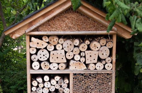 Material F R Insektenhotel 3682 by Insektenhotel Insektenschutz Naturschutz F 252 R Jeden Garten