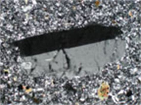 sanidine thin section sanidine