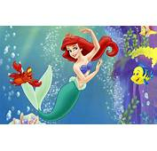 Ariel  Little Mermaid And Her Friends In The Water