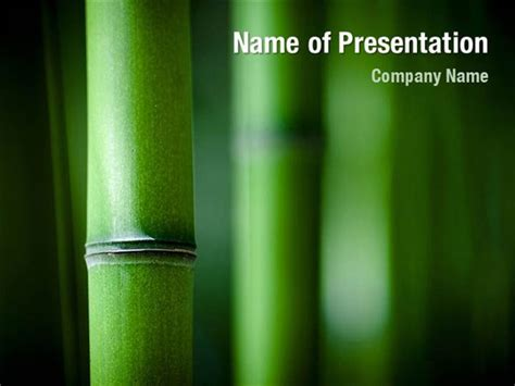 Green Bamboo Powerpoint Templates Green Bamboo Powerpoint Backgrounds Templates For Bamboo Powerpoint Template