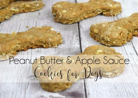 peanut butter cookies for dogs 35 pet recipes your dogs and cats will beg for page 2 of 8 diy