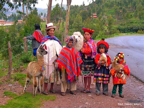 served american south tradition new quechua family in traditional dress with alpaca pose for a