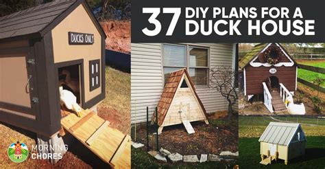diy duck house coop plans ideas