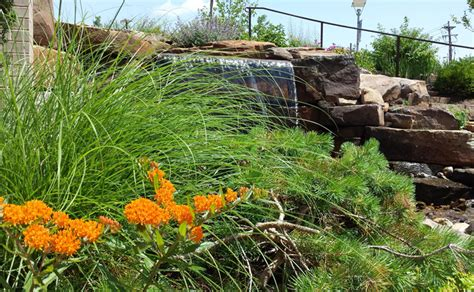 landscaping st louis st louis ecological restoration landscaping
