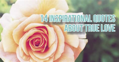 inspirational quotes about true love 14 inspirational quotes about true love datevitation