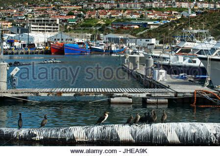 fishing boat jobs in cape town fishing trawlers at the harbour of hout bay near cape town