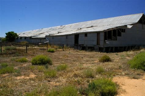 panoramio photo of quot toganmain quot shearing shed