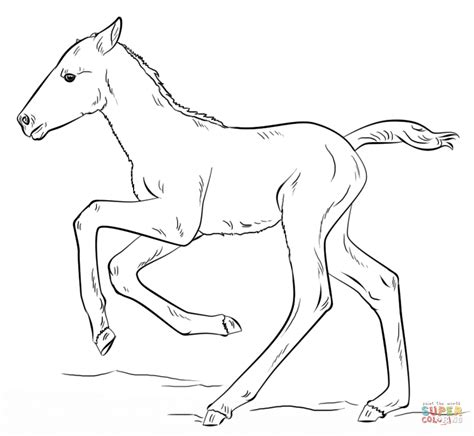 coloring pages of horses and foals running foal coloring page free printable coloring