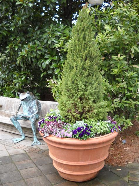 Plant Combination Ideas For Container Gardens Container Garden Ideas Hgtv