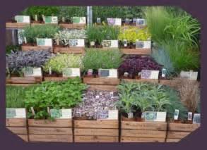 Garden Centre Design Ideas 41