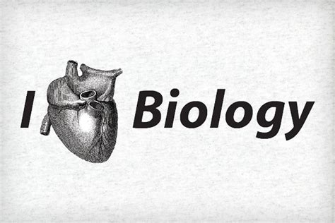 edmodo biology mr lopez biology class welcome to biology