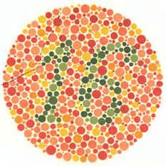 Color Blind Test Chart Planşele Ishihara Setul De 38 Sunt Discromat şi Sunt şofer