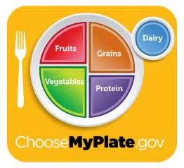 eat to compete quot myplate quot for athletes