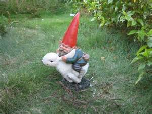 best 25 funny garden gnomes ideas on pinterest garden