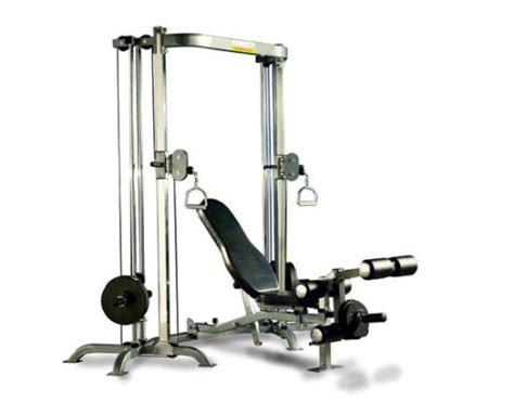 leg lift bench powertec p ss shape system with bench and leg lift