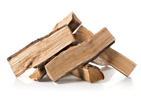 Firewood Fireplace by Bugs In Firewood And How To Keep Them Out