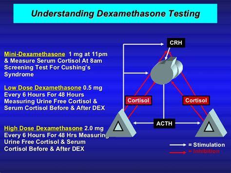 Dexamethasone Ul hyperprolactinemia 3