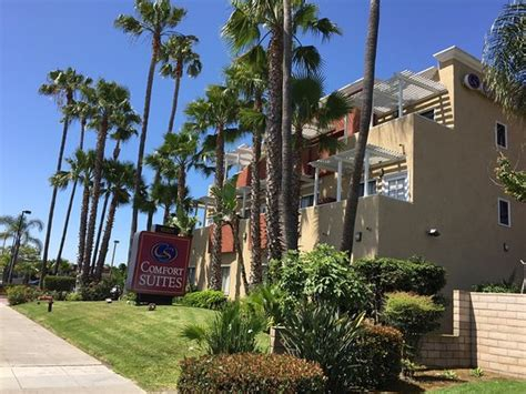 Comfort Suites Huntington Reviews by Photo0 Jpg Picture Of Comfort Suites Huntington