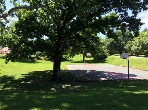 pictures of shades file in the shade of a tree at watson park jpg wikimedia