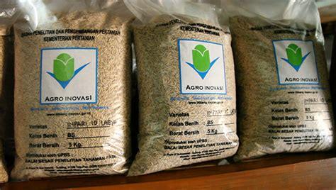 Benih Bibit Padi Seed Ss Label Unggu Varietas Way Apo Buru 5kg klasifikasi benih padi yang dikeluarkan oleh kementerian pertanian kabartani