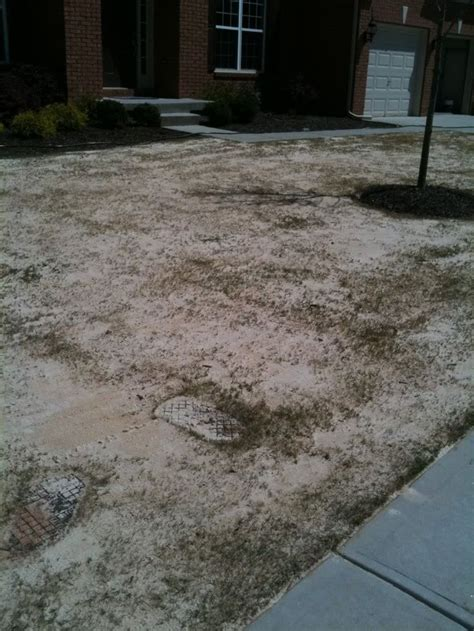 Levelling Backyard by Leveling The Lawn With Sand Backyard