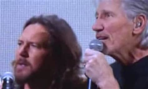 comfortably numb eddie vedder eddie vedder the hollywood gossip