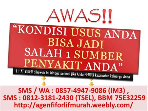 Agen Fiforlif Jakarta agen fiforlif jakarta hubungi 0812 3181 2430 tsel fiforlif jakart