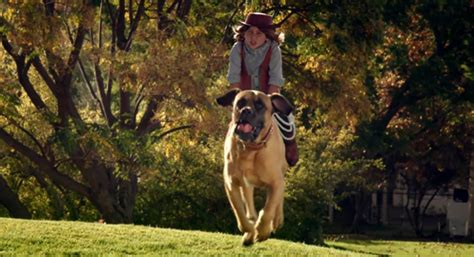 commercial girl riding horse did you take issue with the doritos super bowl commercial