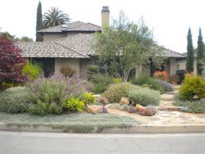 drought tolerant landscapes layered landscape of mediterranean plants xeriscape and