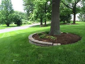 mulching around tree rings for our front yard tree my